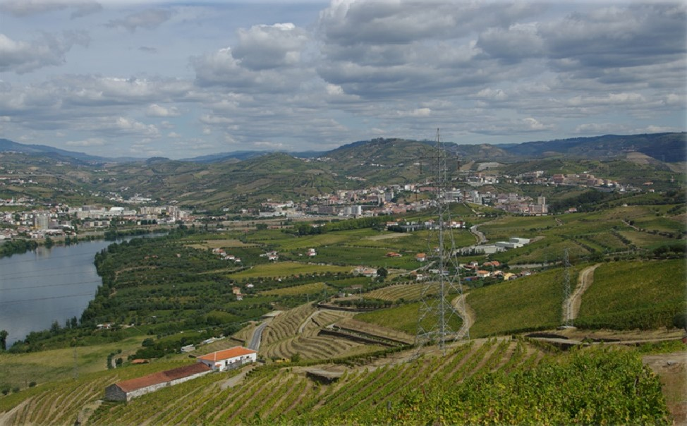 Farms and Rural Hotels in the heart of the Douro